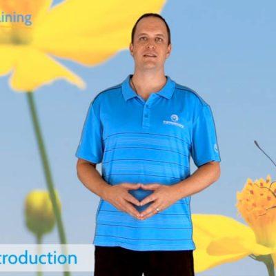 TCC1 Introduction to Posture